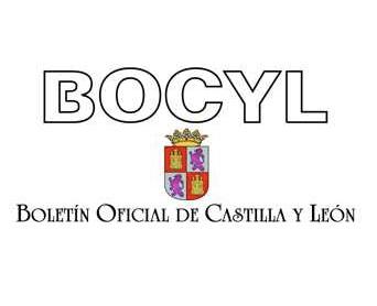 El BoCyL digital tendrá validez jurídica | Segoviaudaz. Noticias y ...