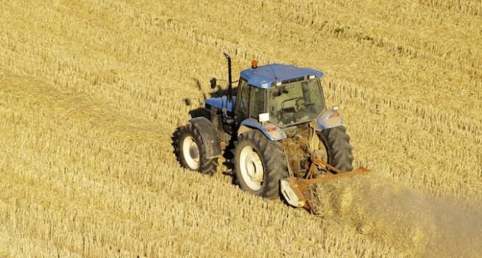 Peligran la cosecha de cereal y los pastos de primavera por la ausencia de lluvias