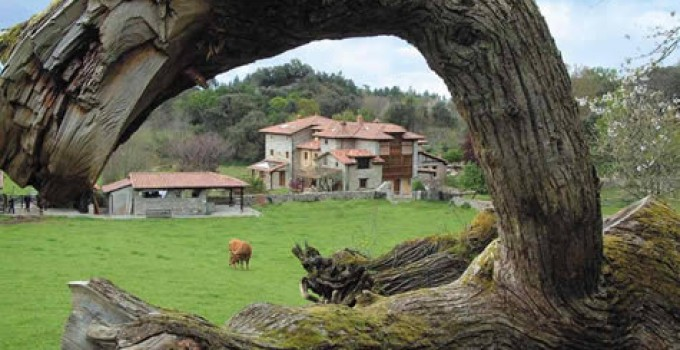 Incentivos para el emprendimiento en el medio rural