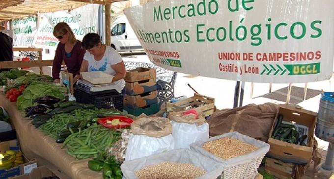 Sábado de mercado ecológico