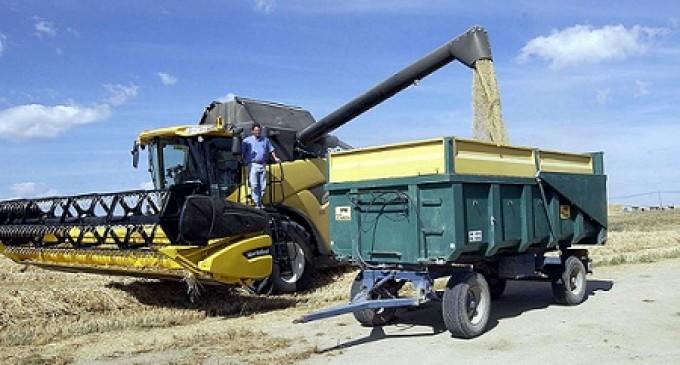 Peligra la cosecha de cereal