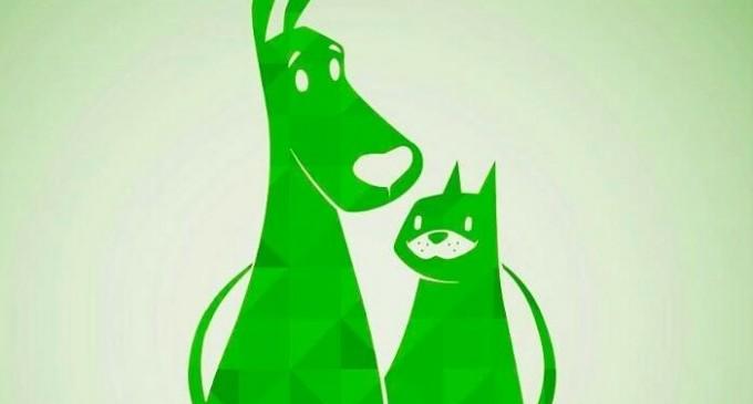 La Asociación 'Proyecto Dylan' cuestiona la coordinación entre la Protectora de animales y la policía local