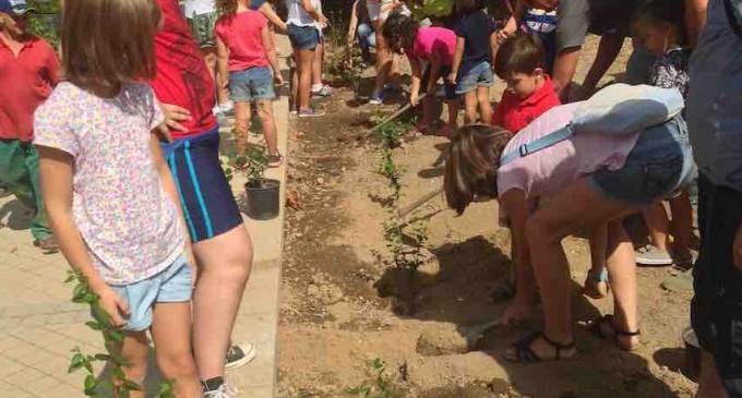 Niños concienciados con el medio ambiente