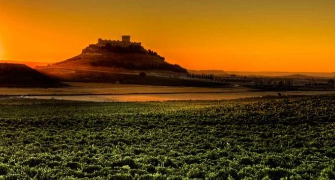 Pago de Carraovejas está entre las cien mejores bodegas del mundo