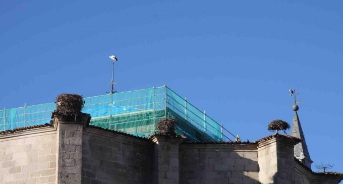 Azálvaro ve peligrar el vínculo de las cigüeñas con la iglesia de San Eutropio en El Espinar