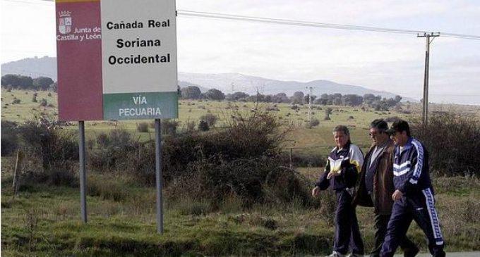 Tercer 'Paseo de luna llena' de la Fundación Caja Rural de Segovia